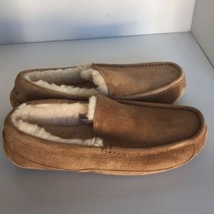 UGG Shoes - 🎁CLEARANCE 🎁New Ugg Ascot Chestnut moccasin Sz 8